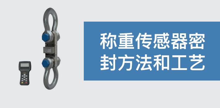 称重传感器密封方法和工艺
